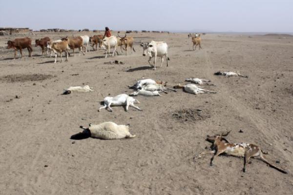 drought risks