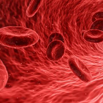 blood 1813410